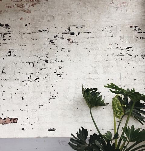 Mur gorgé d'humidité qui s'effrite