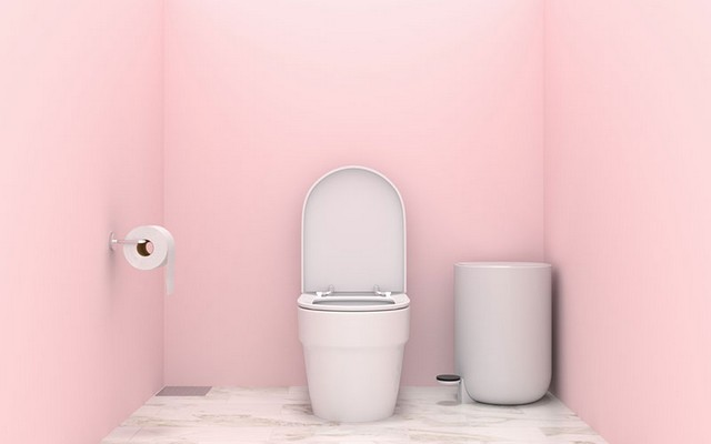 Toilettes de couleur rose