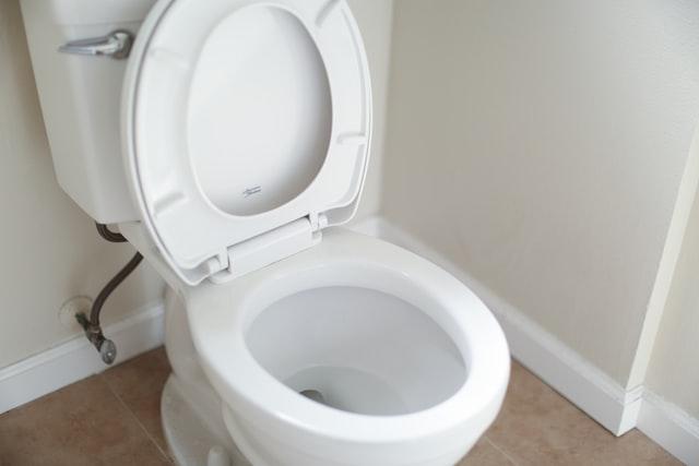 WC très entartré